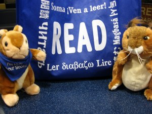 Squirrels Show Off Poetry Bag
